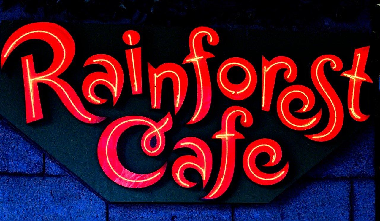 Rainforest cafe em Miami