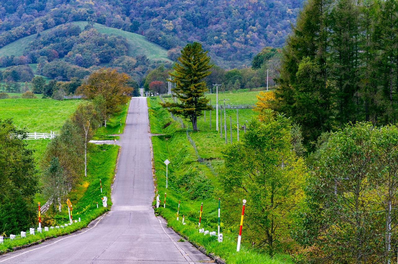 aluguel de carro no Japão estradas