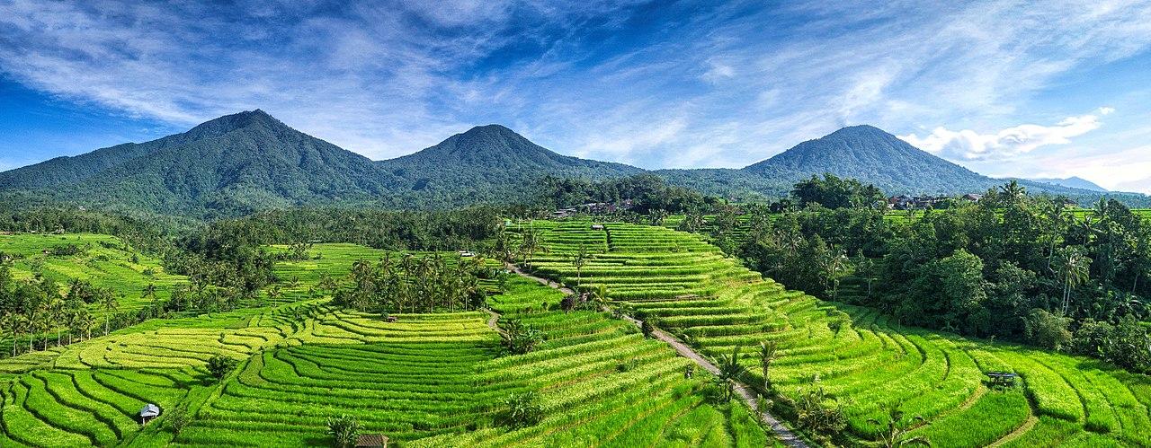 passeios na Indonesia Jatiluwith