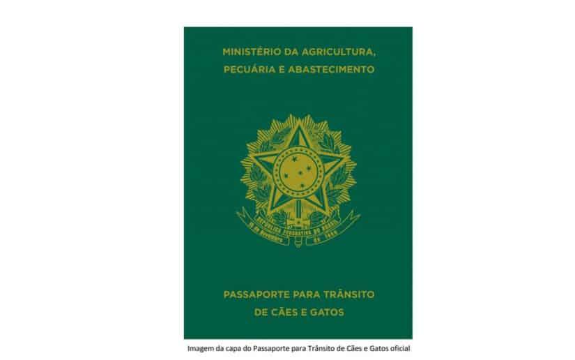 passaporte para cães e gatos