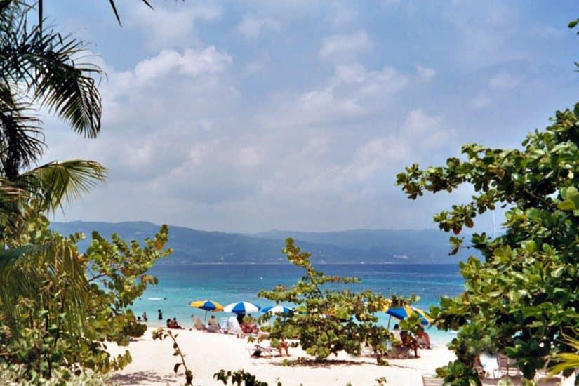 movhilao jamaica