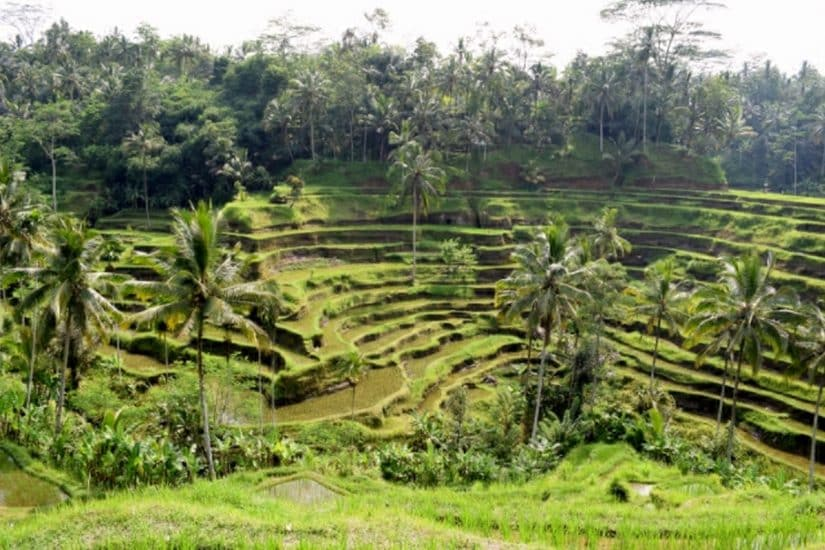 roteiro na indonésia