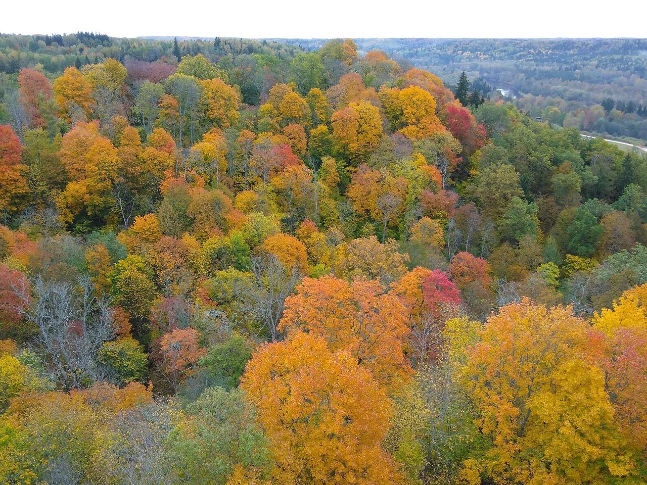clima da letonia outono