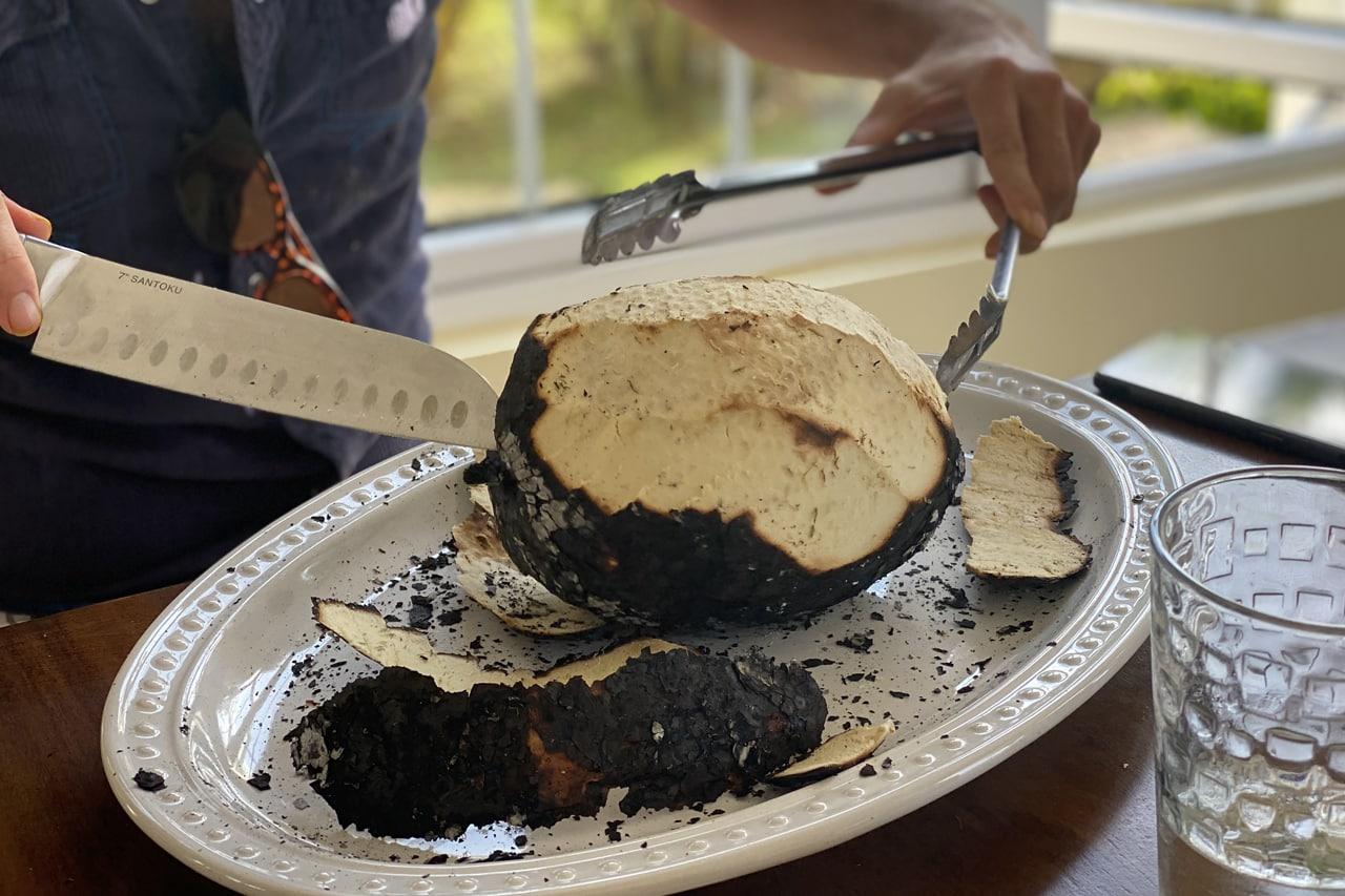 Fruta-pão é típica da Jamaica