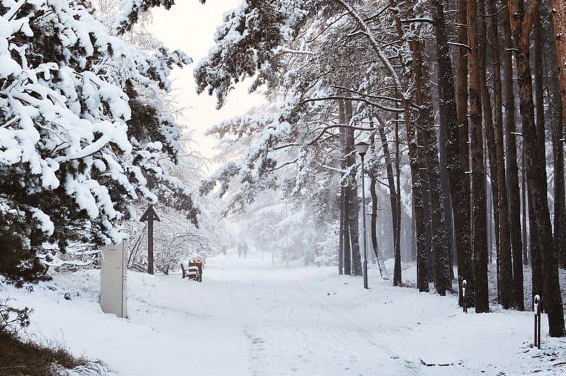 lituania clima