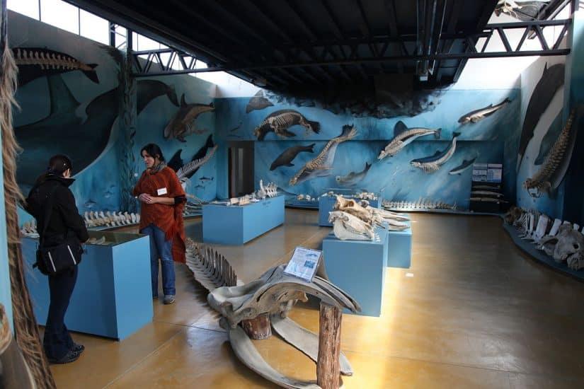 museus pagos em Ushuaia