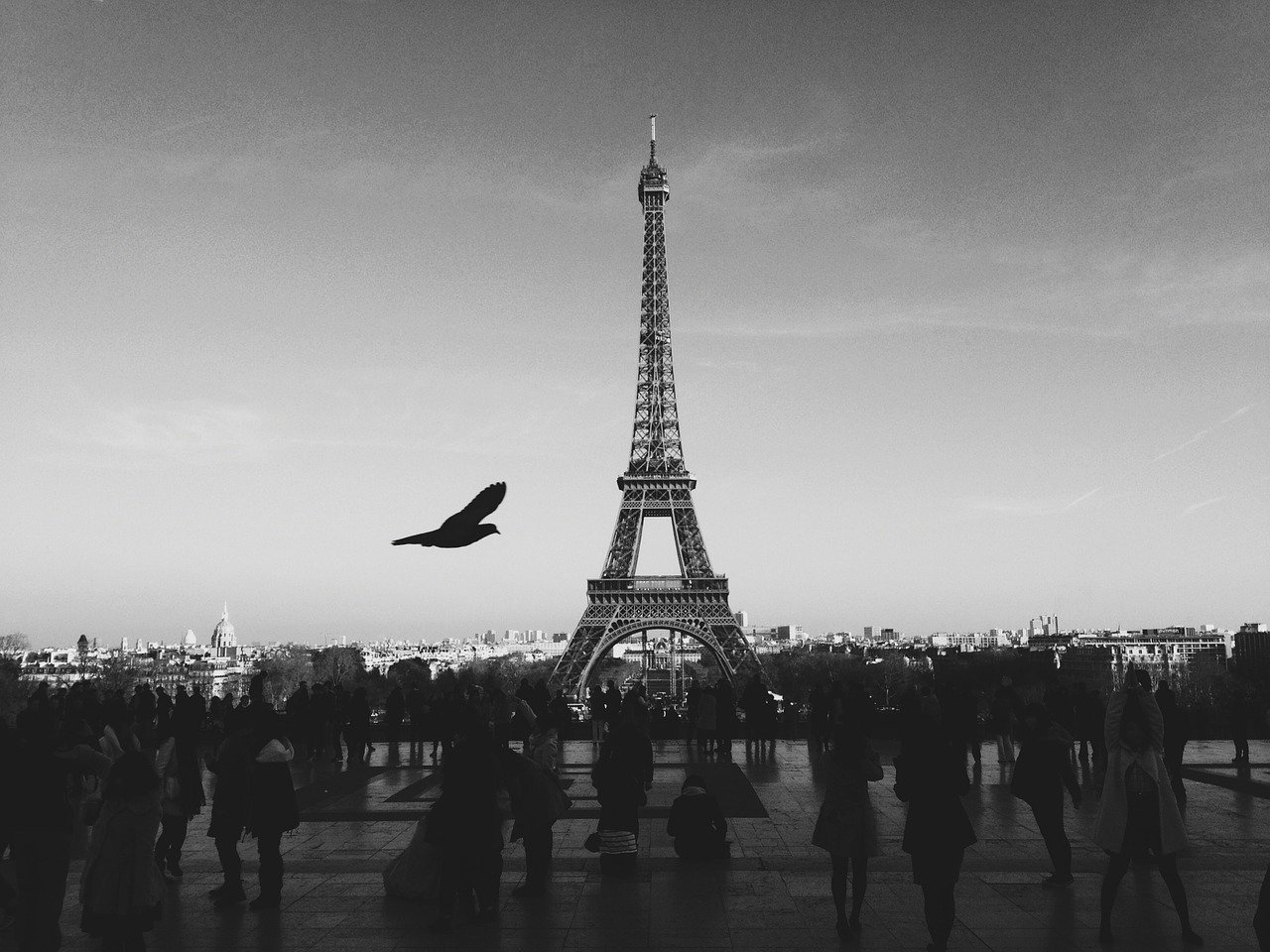 Mais imagens de Paris pb