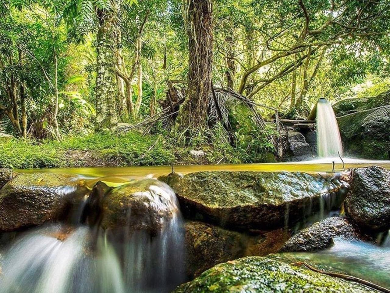 fotos em maragogi cachoeiras