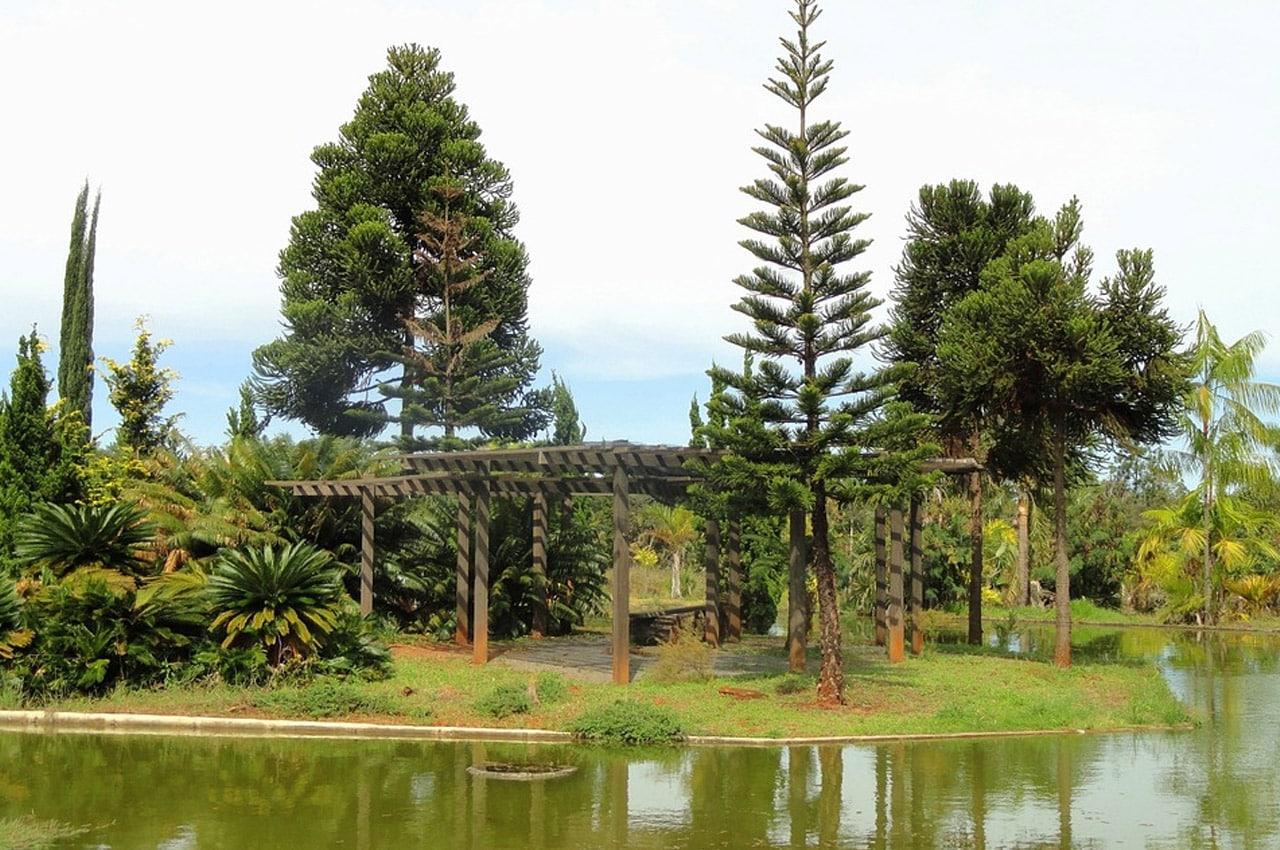 jardim botanico de brasilia