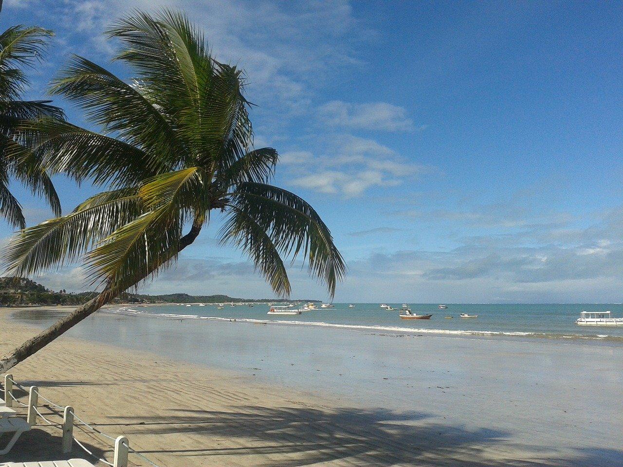 praia mais bonita de Maragogi?