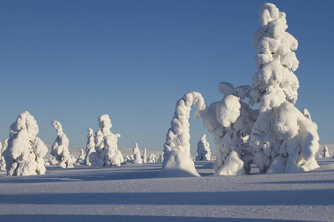 fotos de paisagens naturais Finlândia inverno
