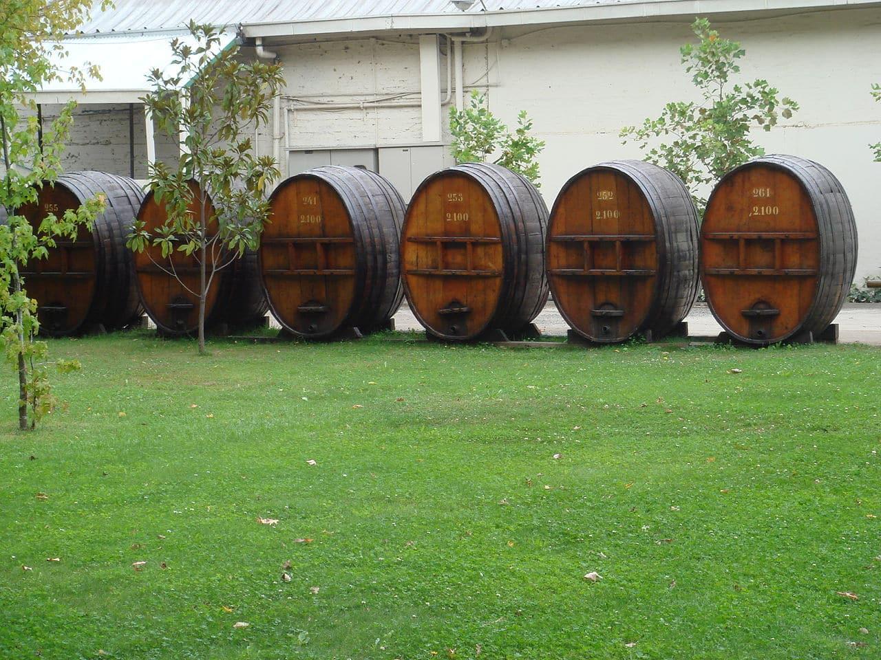 onde comprar vinhos no chile