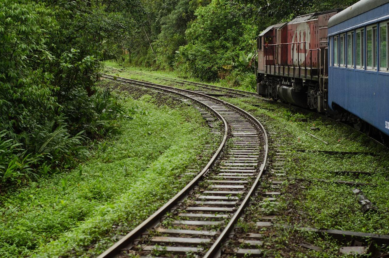 passeio de trem em curitiba