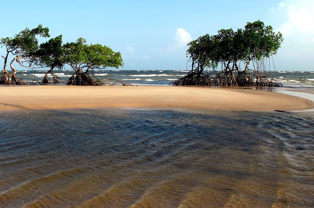 Ilha de Marajó Pará